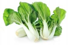 白菜 300个