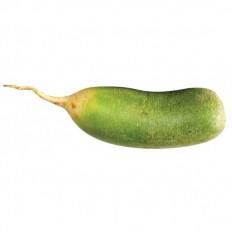 Green Oriental Radish 1kg
