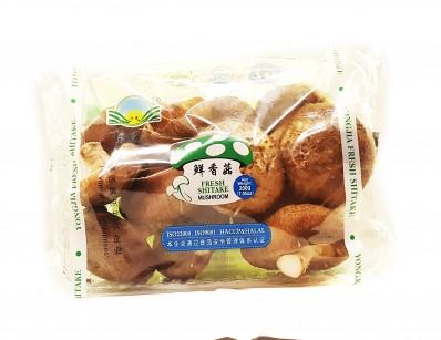 YONG JIA Fresh Shitake Mushroom 200g
