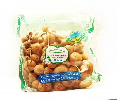 YONG JIA Brown Bunashimeji Mushroom - 1 pack